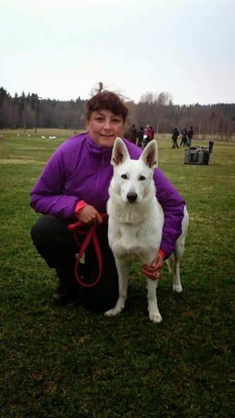 White Swiss Shepherd Dog Born to Win White Yes in Sweden in Rally Obedience
