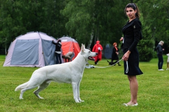 22.06.14 Dog Show Results