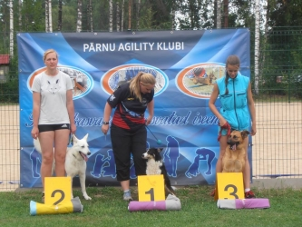 White Swiss Shepherd Dog Born to Win White MayDay in Agility 2 place